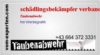 Profi Laubschutz zuverl/ässig gegen Verstopfen von Regenrinnen L/änge:72 Vogelabwehrspie/ße L/änge w/ählbar Dachrinnenschutz aus Kunststoff Laubfangstreifen mit einfacher CLIP Montage /& Verbindung