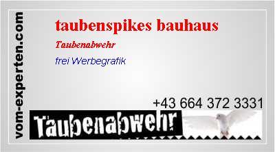 Taubenspikes Bauhaus Vogelabwehr Vom Expertencom